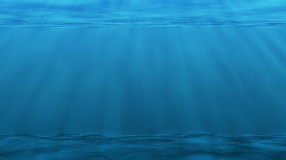 De voordelen van marine phytoplankton
